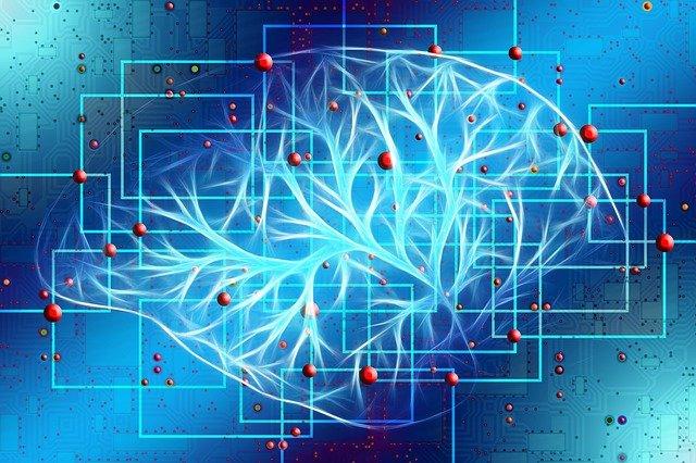 Dibujo esquemático de las conexiones cerebrales
